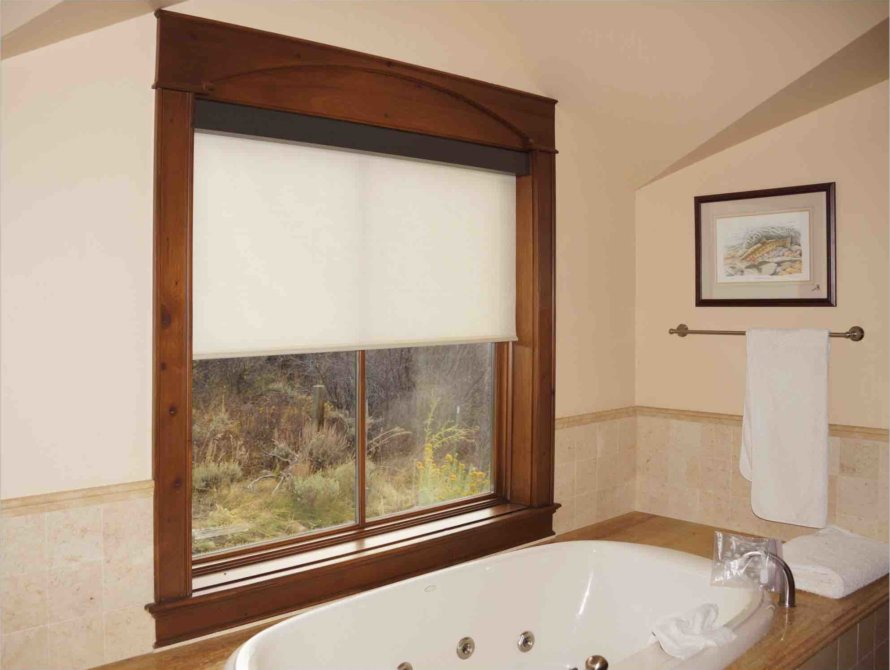 Bathroom Window Coverings - Today's Interiors