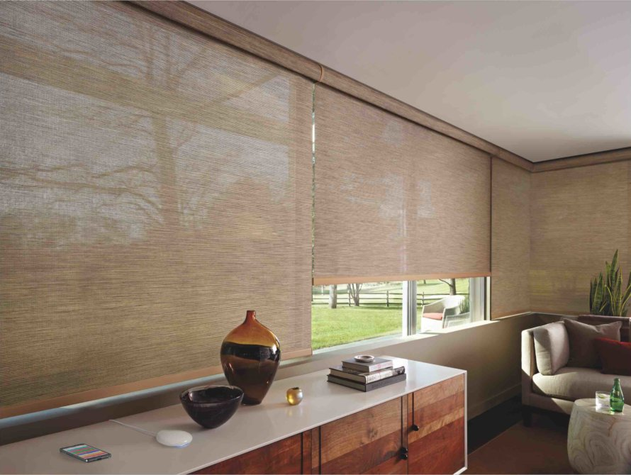 Interior Office Shades - Today's Interiors