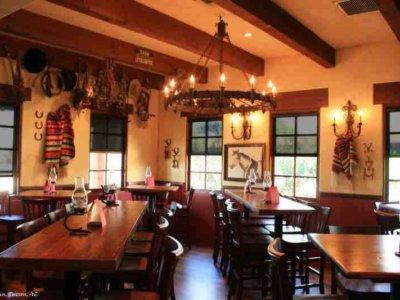 Restaurant Window Shades - Today's Interiors